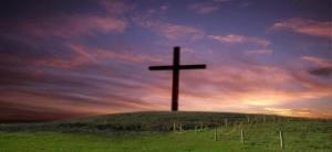 cross_field