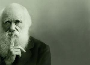 secret-darwin